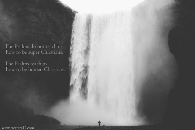 psalms.t41