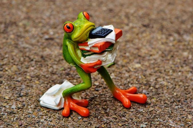 frogschool